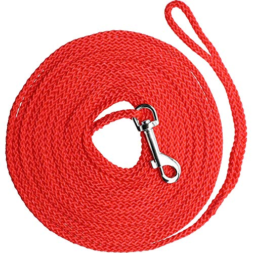 - Vcalabashor Long Dog Puppy Obedience Recall Training Agility Rope Leash/Small Dog Check Cord/Young Dog Tracking Leads/Highly Visible and Floats/Red - 30ft