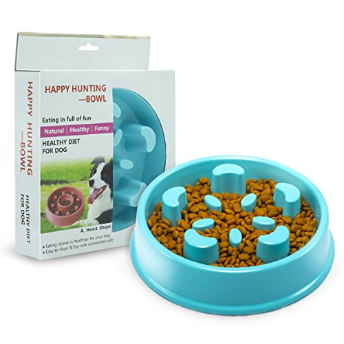 Slow Feeder Dog Bowl - Interactive Fun Slow Eating Bowl for Pets Health Bloat Stop Anti-Choking, Non-Toxic. Eco-Friendly Material (Large)