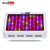 300W Led Grow Light,Full Spectrum DWC Hydroponic Grow Lights System,Strong Penetration Indoor Garden Greenhouse Led Plant lights, Large Footprint Growing lights for Indoor Plants Veg and Flower