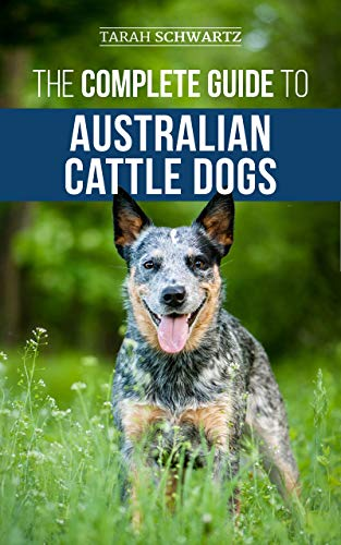 The Complete Guide To Australian Cattle Dogs Finding Training Feeding Exercising And Keeping Your Acd Active Stimulated And Happy