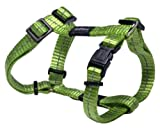 Rogz Utility Small 3/8-Inch Reflective Nitelife Adjustable Dog H-Harness, Lime, My Pet Supplies