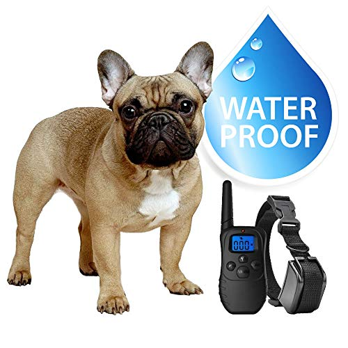 eXuby Small Dog Waterproof Shock Collar & Remote - Includes 2 Collars (Small & Medium) + Free Dog Clicker Training - 3 Modes (Sound, Vibration & Shock) - Rechargeable Batteries