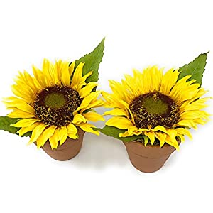 """Melrose Int Sunflower Decor Set of 2 Potted Flowers Artificial Faux Faked Ornamental Table Wedding Party Yellow Kitchen Decoration 5.5"""" H 55"""