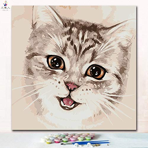50x50 with frame 8577 cat15 KYKDY Cut Animal Doctor Cat Digital Oil Painting coloring Numbers Pictures by Numbers on Canvas with Paint colors for Kids prac,7265 cat13,50x50 no Frame