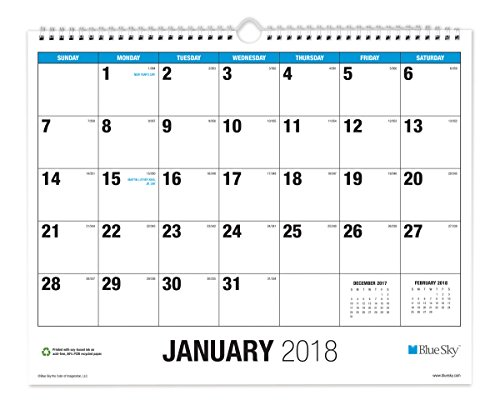Blue Sky 2018 Monthly Wall Calendar, Twin-Wire Binding, Large Print, 15