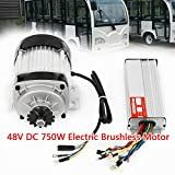 Electric Brushless Motor Tricycle Motor 48V DC 750W with Controller DIY Tricycle E-Bike Bicycle Reduction Quad Trike USA STOCK