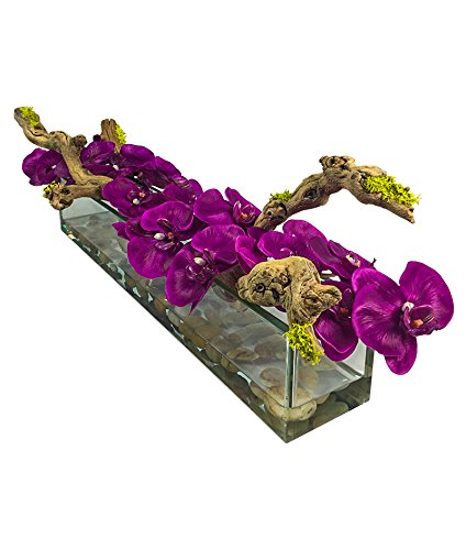Amazon Phalaenopsis Orchid And Natural Wood Floral Arrangement