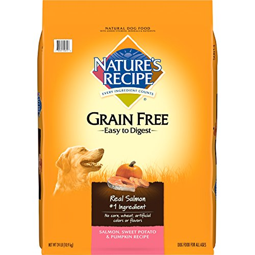 Nature's Recipe Grain Free Easy to Digest Dry Dog Food, Salmon, Sweet Potato & Pumpkin Recipe, 24-Pound