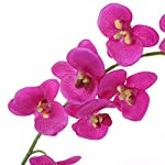 Felice-Arts-Artificial-Flowers-66ft-32-Heads-Butterfly-Orchid-Home-Decor-Fake-Flower-for-Wedding-Home-Office-Party-Hotel-Restaurant