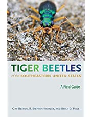 Tiger Beetles of the Southeastern United States: A Field Guide