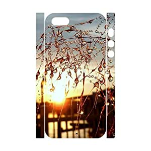 Custom Cover Case with Hard Shell Protection for Iphone 5,5S 3D case with Crystal droplets lxa#451571