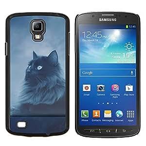 "Be-Star Único Patrón Plástico Duro Fundas Cover Cubre Hard Case Cover Para Samsung i9295 Galaxy S4 Active / i537 (NOT S4) ( Gato de pelo largo Gris Negro Ojos azules del cielo nocturno"" )"