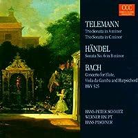 Triosonaten A-Moll / C-Moll / Sonate Nr. 6 H-Moll / Konzert C-Dur