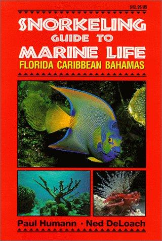 Snorkeling Guide to Marine Life Florida, Caribbean, Bahamas Coral Sea Reef Guide