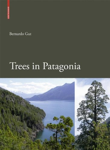 Trees in Patagonia ()