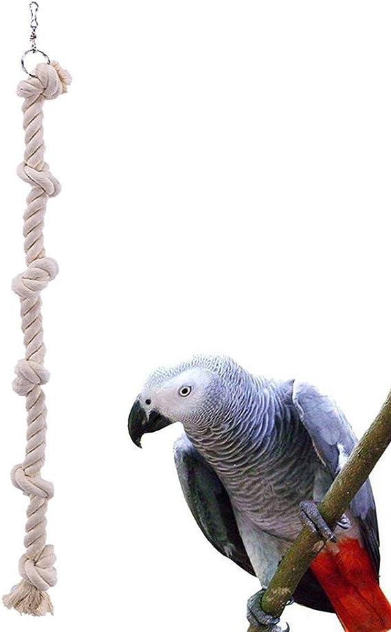 Hzb821zhup Juguete para Picar Loros, Juguete para pájaros, Escalera, Cuerda de morder, Cuerda de algodón para Colgar, Jaula Decorativa, Juguete para Masticar: Amazon.es: Productos para mascotas