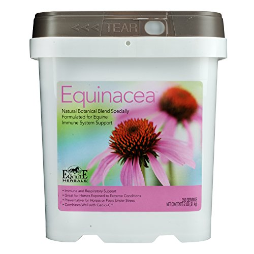 Equinacea by Equilite Herbals
