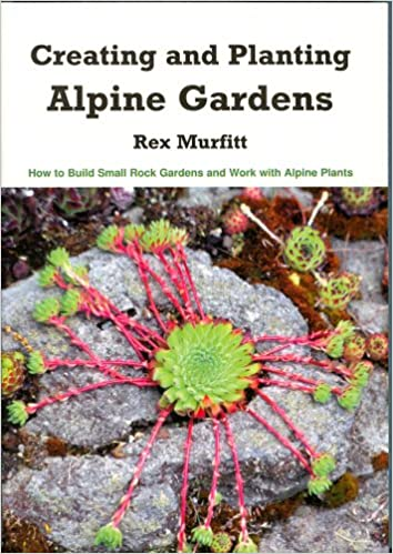 Creating And Planting Alpine Gardens How To Build Small Rock Stunning Alpine Garden Design