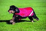 Rambo Duo Dog Blanket XX-Large Red/Black