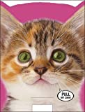Sound Greeting Cards-Birthdaycard Cat Noise Card
