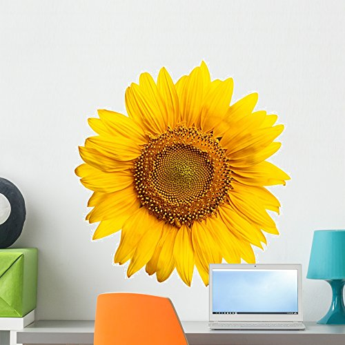 Sunflower Wall Mural by Wallmonkeys Peel and Stick Graphic (24 in W x 24 in H) WM216825