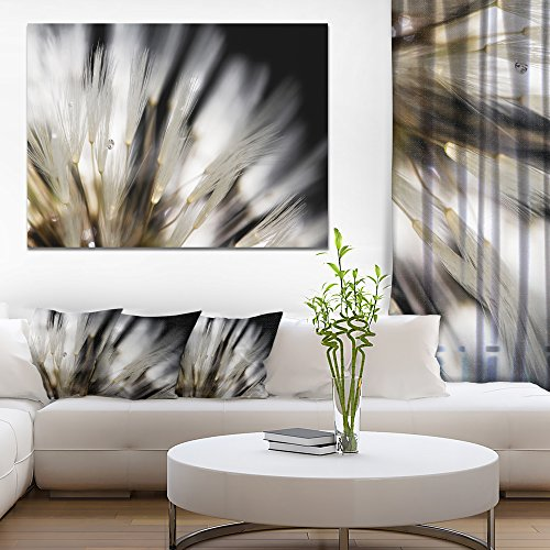 Dandelion Close up with Dewdrops Flowers Canvas Wall Artwork