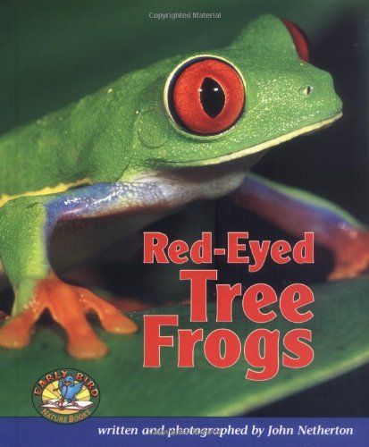 Red-Eyed Tree Frogs (Early Bird Nature)