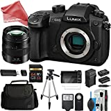 PANASONIC LUMIX GH5 4K Mirrorless Digital Camera PROFESSIONAL DigitalAndMore Bundle (Includes GH5 Body + PANASONIC LUMIX G X 12-35mm VARIO II PROFESSIONAL LENS)