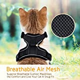 rabbitgoo Cat Harness and Leash for Walking, Escape Proof Soft Adjustable Vest Harnesses for Cats, Easy Control Breathable Reflective Strips Jacket, Black, XS