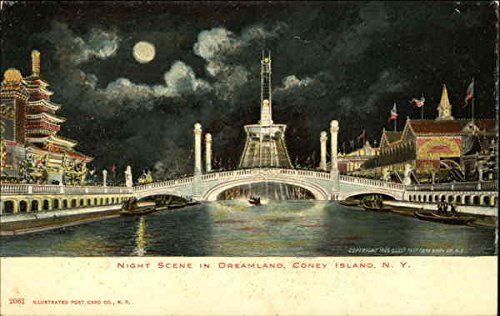 Island Coney Dreamland (Night Scene in Dreamland, Coney Island New York, New York Original Vintage Postcard)