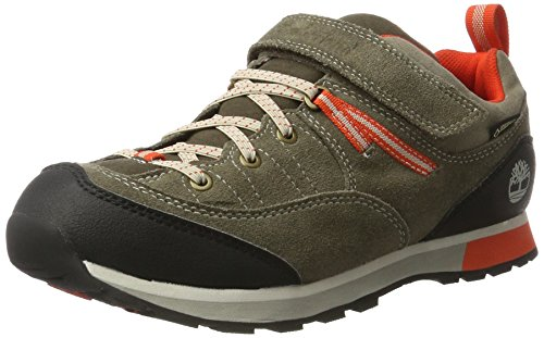 Timberland Kids Griffin Park Goretex Waterproof Oxford, Brown (Canteen), 4 UK ()