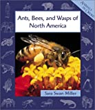 Ants, Bees, and Wasps of North America, Sara Swan Miller, 0531122441