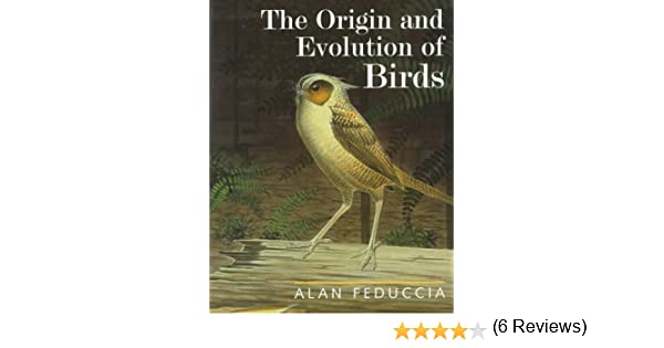 The origin and evolution of birds prof alan feduccia the origin and evolution of birds prof alan feduccia 9780300064605 amazon books fandeluxe