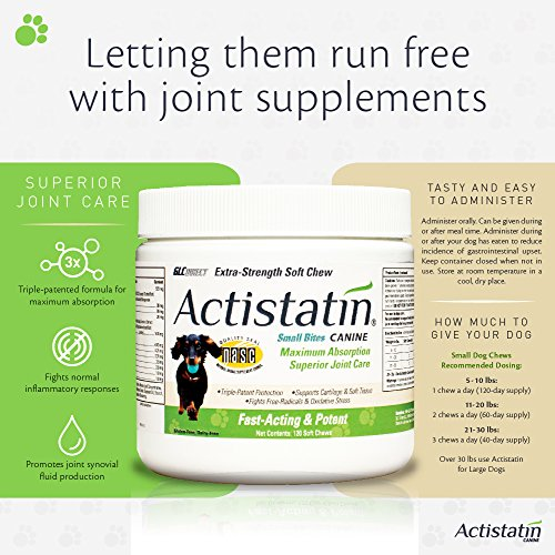 Image of Actistatin Canine Small Dog Soft Chews, 120ct – Patented Extra-Strength Joint, Cartilage, Soft Tissue Supplement: Glucosamine, Chondroitin, Manganese, MSM, L-Carnitine – High Absorption, Fast Results