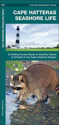 Cape Hatteras Seashore Life: A Folding Pocket Guide to Familiar Plants & Animals in the Cape Hatteras Region (A Pock
