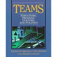 Teams: Structure, Process, Culture, and Politics