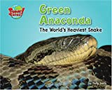 Green Anaconda: The World's Heaviest Snake (Supersized!)