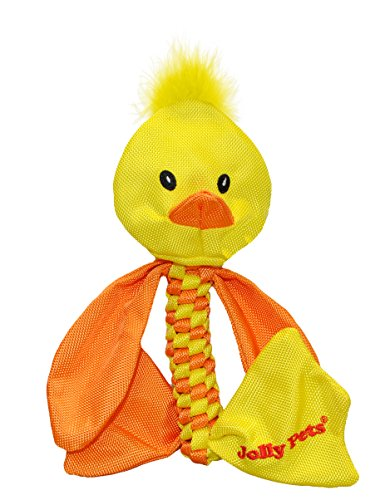 Jolly Pets Duck Animal Flathead Tug/Squeak Toy, Large