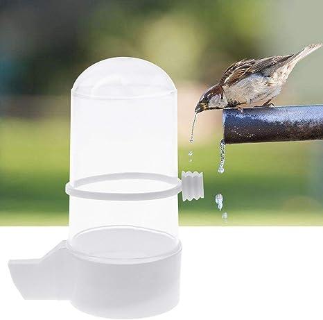 Ogquaton Abreuvoir pour Oiseaux Buveur, Distributeur d'aliments Budgie  Canary Finch Alimentation pour Animaux de Compagnie Durable et Pratique:  Amazon.fr: Animalerie