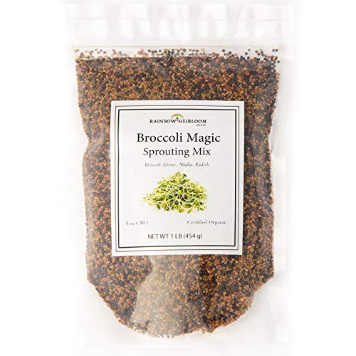Broccoli Magic Sprouting Mix | Contains Clover, Alfalfa, Radish & Broccoli Sprout Seeds Organic Non GMO | Great for Growing Microgreens & Sprouts | 1 LB | Rainbow Heirloom Seed Co.