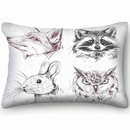 Set Forest Animals Fox Racoon Rabbit Wildlife Owl Nature Skin Cool Super Soft and Luxury Pillow Cases Covers Sofa Bed Throw Pillow Cover with Envelope Closure 1624 Inch