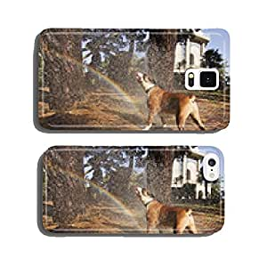 boxer dog having a shower in the park cell phone cover case Samsung S6