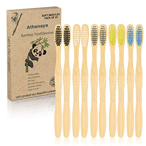 brosses à dents recyclables