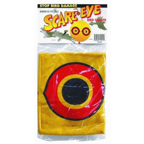 Bird-X Scare Eye Balloon Pest Control (Scare Balloon Eye)