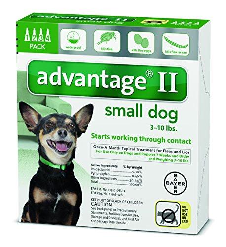 Advantage Ii Small Dog 4 Pack