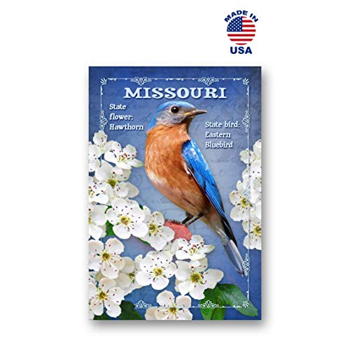Missouri Postcard - MISSOURI BIRD AND FLOWER postcard set of 20 identical postcards. MO state symbols post cards. Made in USA.