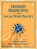img - for Diversity Perspectives for Social Work Practice book / textbook / text book