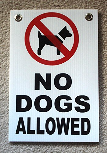 1Pc Matchless Popular No Dogs Allowed Signs Warning Message Yard Decal Plastic Coroplast Size 8