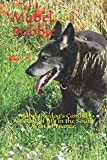 Mabel Babble: Mabel the dog's Candid Account of