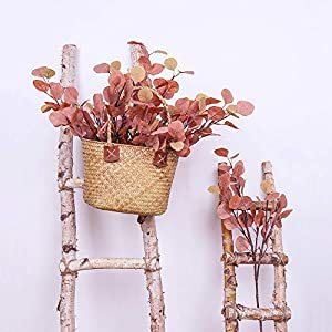 YUYAO Artificial Plants Silver Dollar Eucalyptus Leaves 6Pcs Leaf Silk Artificial Greenery Stems Fake Plants Leaves for Home Wedding Party Decoration (Maple Red) 2